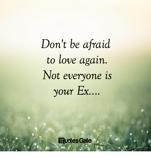 Love, Memes, and Love Again: Don't be afraid  to love again.  Not everyone is  our Ex  y  ...  DuotesGate