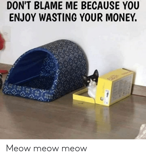 Blame Me: DON'T BLAME ME BECAUSE YOU  ENJOY WASTING YOUR MONEY. Meow meow meow