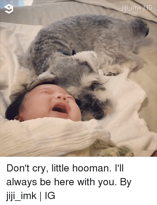 Dank, 🤖, and Cry: Don't cry, little hooman. I'll always be here with you.  By jiji_imk | IG