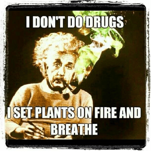 Drugs, Fire, and Memes: DON'T DO DRUGS  SET PLANTS ON FIRE AND  BREATHE