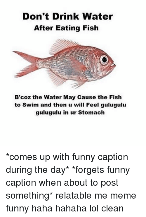 dont drink water after eating fish bcoz the water may 9368871 don't drink water after eating fish b'coz the water may cause the