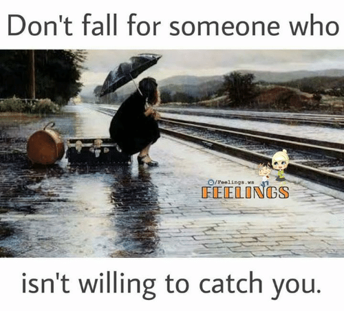 Fall, Memes, and 🤖: Don't fall for someone who  O/Feelings.ws  FEELONGS  isn't willing to catch you
