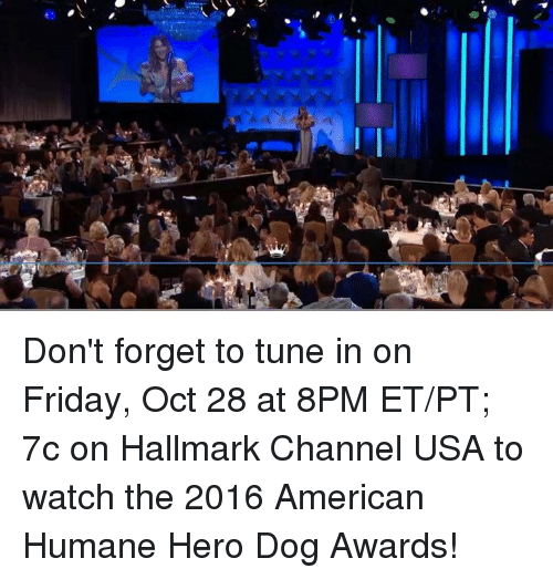 How To Watch The Hero Dog Awards