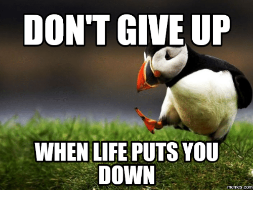 Dont Give Up Meme