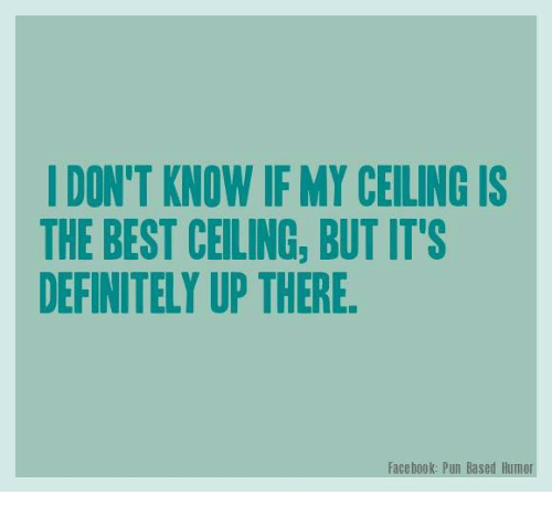 Facebook Pun: DON'T KNOW IF MY CEILING IS  THE BEST CEILING, BUT ITS  DEFINITELY UP THERE.  Facebook: Pun Based Humor