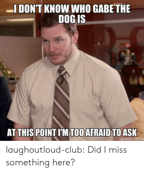 Gabe: DON'T KNOW WHO GABE THE  DOG IS  AT THIS POINT I'M TOO AFRAID TOASK  MEMEFUL COM laughoutloud-club:  Did I miss something here?