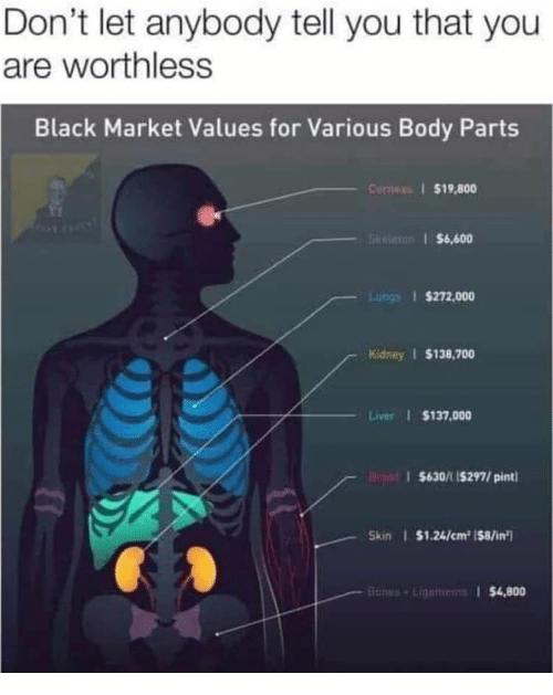 gre: Don't let anybody tell you that you  are worthless  Black Market Values for Various Body Parts  Conwas $19,800  GRe $6,600  Luhgs $272,000  Kidney $138,700  Liver $137,000  $630/1 15297/pint  Skin $1.24/cm2 ($8/in  Banes+Linemens $4,800
