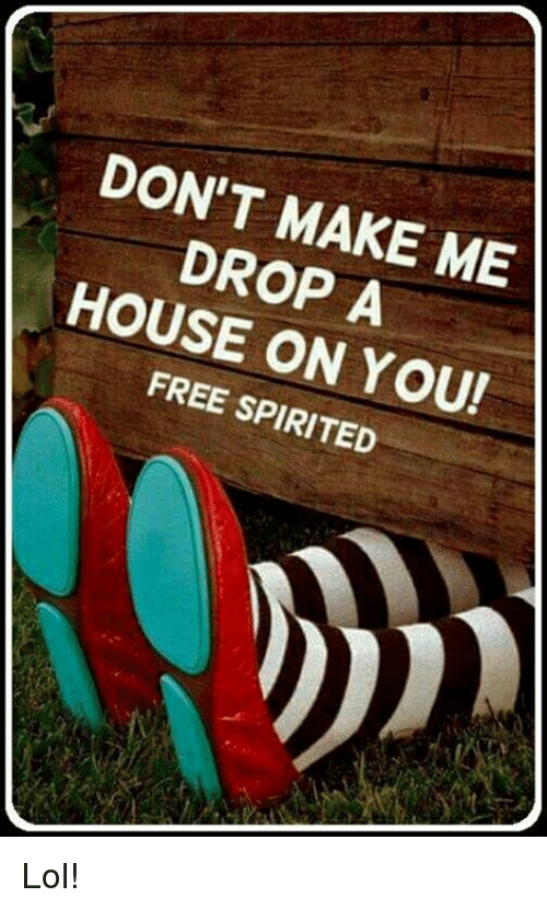 Don 39 t make me drop a house on you free spirited lol for Build me a home