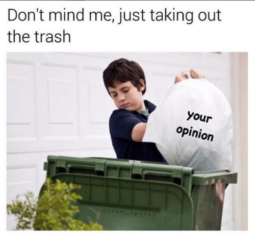 taking out the trash: Don't mind me, just taking out  the trash  your  opinion