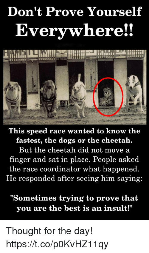 "Dogs, Best, and Cheetah: Don't Prove Yourself  Everywhere!!  This speed race wanted to know the  fastest, the dogs or the cheetah.  But the cheetah did not move a  finger and sat in place. People asked  the race coordinator what happened.  He responded after seeing him saying:  ""Sometimes trying to prove that  vou are the best is an insult!"" Thought for the day! https://t.co/p0KvHZ11qy"