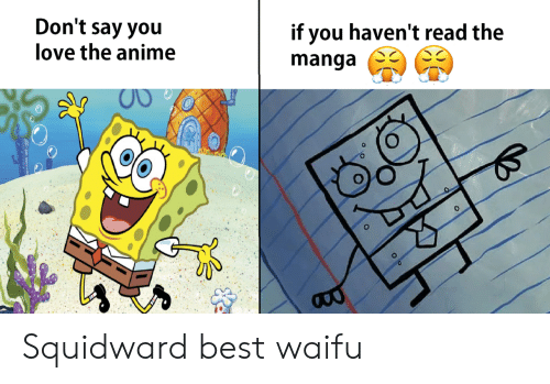 Best Waifu: Don't say you  love the anime  if you haven't read the  0 Squidward best waifu