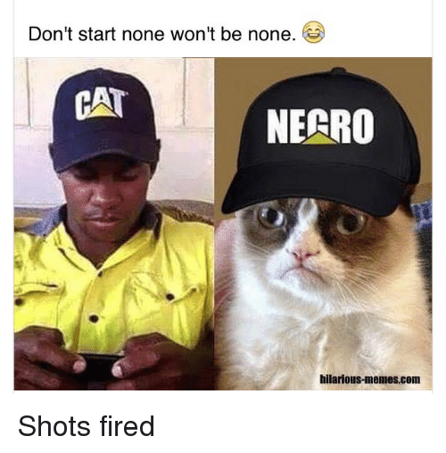 Blackpeopletwitter, Cats, and Fire: Don't start none won't be none.  CAT  NECRO  hilarious-memes.com Shots fired