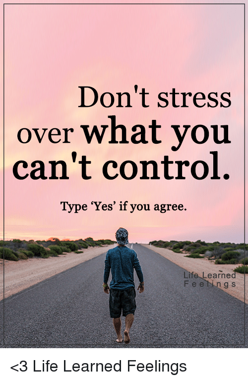 Don T Stress Funny Meme : Don t stress over what you can control type yes if