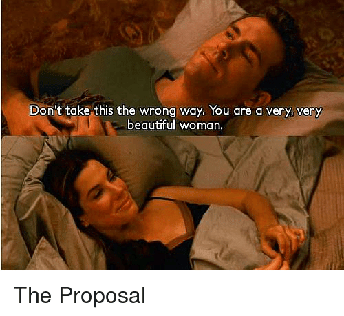 the proposal: Don't take this the wrong way. You are a very, very  beautiful woman. The Proposal