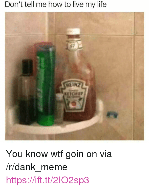 """Dank, Life, and Meme: Don't tell me how to live my life  KETCHUP <p>You know wtf goin on via /r/dank_meme <a href=""""https://ift.tt/2IO2sp3"""">https://ift.tt/2IO2sp3</a></p>"""