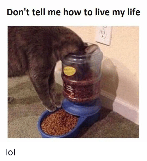 Dont Tell Me How To Live My Life: Don't tell me how to live my life lol