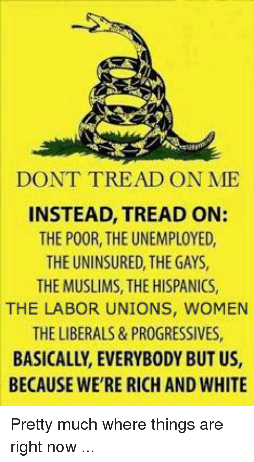 Memes, Progressive, and White: DONT TREAD ON ME  INSTEAD, TREAD ON:  THE POOR, THE UNEMPLOYED,  THE UNINSURED THEGAYS,  THEMUSLIMS, THE HISPANICS,  THE LABOR UNIONS, WOMEN  THE LIBERALS & PROGRESSIVES,  BASICALLY, EVERYBODY BUT US,  BECAUSE WE'RE RICH AND WHITE Pretty much where things are right now ...