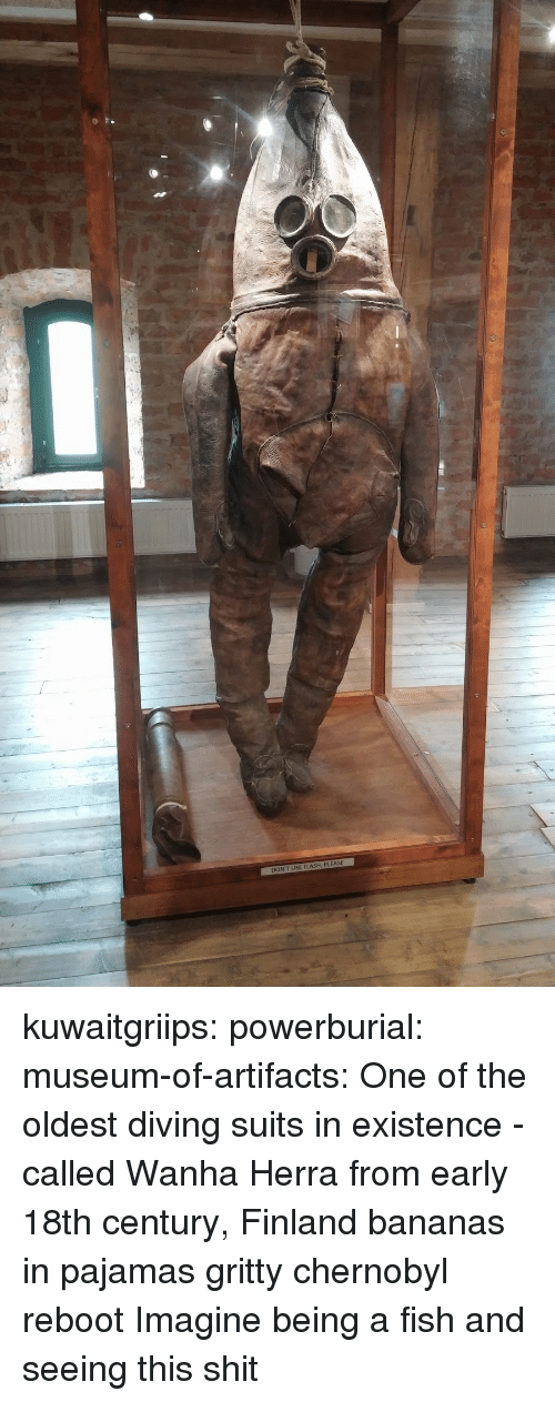 ReBoot: DON'T USE FLASH, PLEASE kuwaitgriips:  powerburial:  museum-of-artifacts: One of the oldest diving suits in existence - called   Wanha Herra from early 18th century, Finland  bananas in pajamas gritty chernobyl reboot   Imagine being a fish and seeing this shit