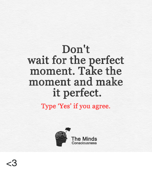 conscious: Don't  wait for the perfect  moment. Take the  moment and make  it perfect.  Type 'Yes' if you agree  The Minds  Consciousness <3