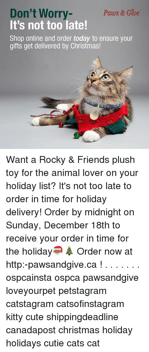 Toys We Got For The Holidays : Don t worry paws give it s not too late shop online and