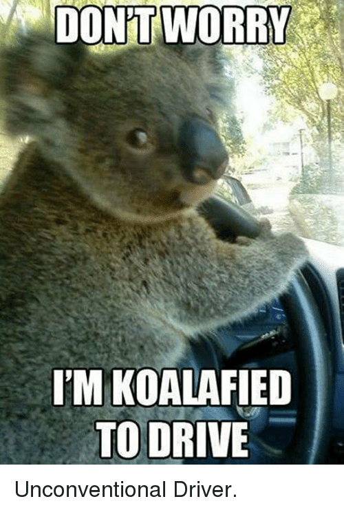 unconventional: DON'T  WORRY  T'M KOALAFIED  TO DRIVE <p>Unconventional Driver.</p>