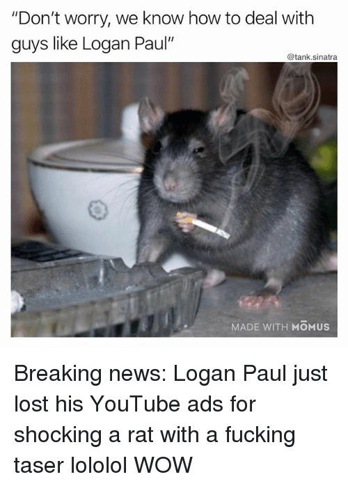 """Fucking, Funny, and News: """"Don't worry, we know how to deal with  guys like Logan Paul'  @tank.sinatra  MADE WITH MOMUS Breaking news: Logan Paul just lost his YouTube ads for shocking a rat with a fucking taser lololol WOW"""