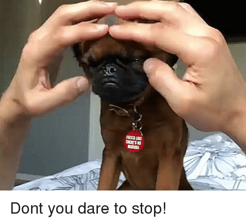 Dare, You, and Stop: Dont you dare to stop!