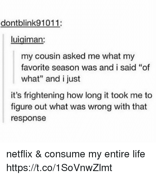 """Life, Memes, and Netflix: dontblink91011:  luigiman  my cousin asked me what my  favorite season was and i said """"of  what"""" and i just  it's frightening how long it took me to  figure out what was wrong with that  response netflix & consume my entire life https://t.co/1SoVnwZlmt"""