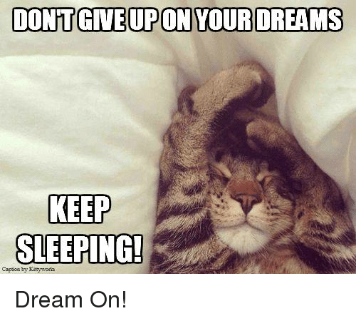 Keep Sleeping: DONTGIVE UPON YOUR DREAMS  KEEP  SLEEPING! Dream On!