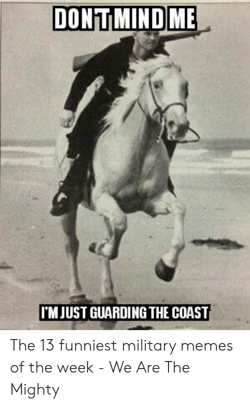 13 Funniest: DONTMINDME  TM JUST GUARDING THE COAST The 13 funniest military memes of the week - We Are The Mighty