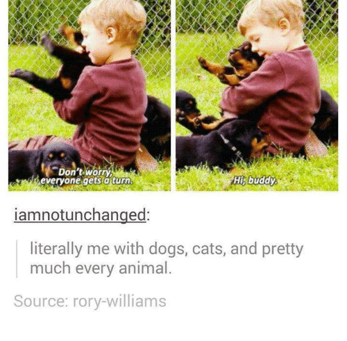 Cats, Dogs, and Animal: Don'tworry  everyone gets aturn  His buddy  iamnotunchanged:  literally me with dogs, cats, and pretty  much every animal  Source: rory-williams