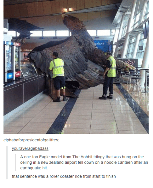 Eagle, Earthquake, and Hobbit: DONUT  elphabaforpresidentofgallifrey  ouraveragebadass  A one ton Eagle model from The Hobbit trilogy that was hung on the  ceiling in a new Zealand airport fell down on a noodle canteen after an  earthquake hit.  that sentence was a roller coaster ride from start to finish