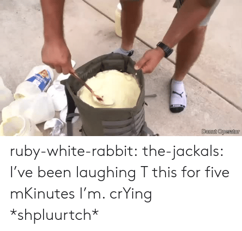 white rabbit: Donut Operator ruby-white-rabbit:  the-jackals:  I've been laughing T this for five mKinutes I'm. crYing  *shpluurtch*