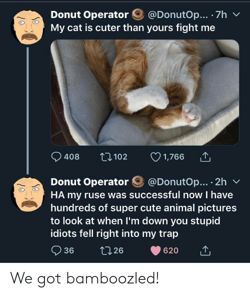 im down: @DonutOp... 7h  Donut Operator  My cat is cuter than yours fight me  1,766  t102  408  @DonutOp... 2h  Donut Operator  HA my ruse was successful now I have  hundreds of super cute animal pictures  to look at when I'm down you stupid  idiots fell right into my trap  36  t126  620 We got bamboozled!