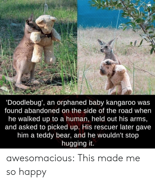 me-so-happy: 'Doodlebug', an orphaned baby kangaroo wa:s  found abandoned on the side of the road when  he walked up to a human, held out his arms,  and asked to picked up. His rescuer later gave  him a teddy bear, and he wouldn't stop  hugging it. awesomacious:  This made me so happy