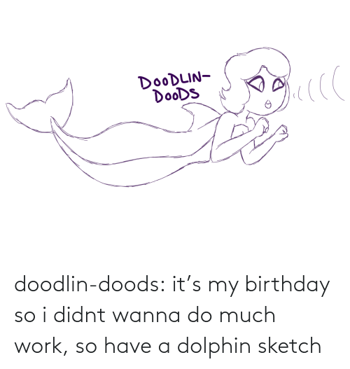 Dolphin: doodlin-doods:  it's my birthday so i didnt wanna do much work, so have a dolphin sketch