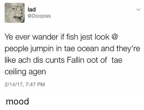 Mood, Fish, and Ocean: @Doopiss  Ye ever wander if fish jest look @  people jumpin in tae ocean and they're  like ach dis cunts Fallin oot of tae  ceiling agen  2/14/17, 7:47 PM mood