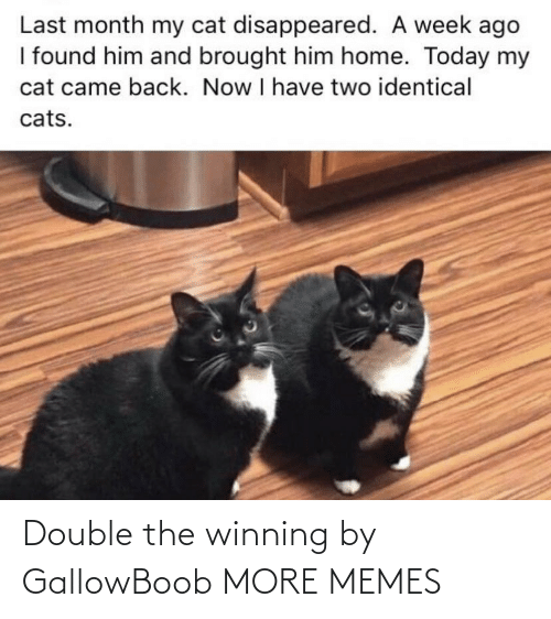 winning: Double the winning by GallowBoob MORE MEMES