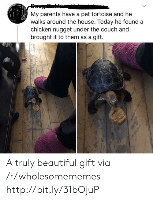Doug: Doug Dear  My parents have a pet tortoise and he  walks around the house. Today he found a  chicken nugget under the couch and  brought it to them as a gift. A truly beautiful gift via /r/wholesomememes http://bit.ly/31bOjuP