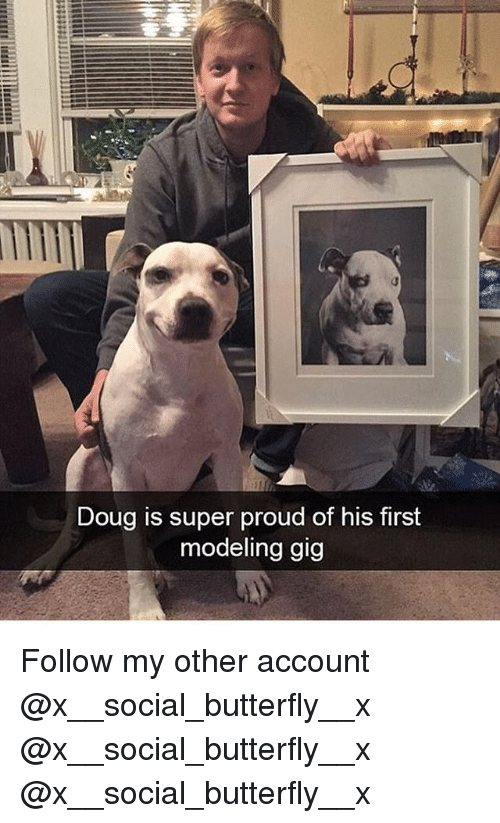 Doug, Memes, and Butterfly: Doug is super proud of his first  modeling gig Follow my other account @x__social_butterfly__x @x__social_butterfly__x @x__social_butterfly__x