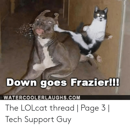 Down Goes Frazier: Down goes Frazier!!!  WATERCOOLERLAUGHS.COM The LOLcat thread | Page 3 | Tech Support Guy