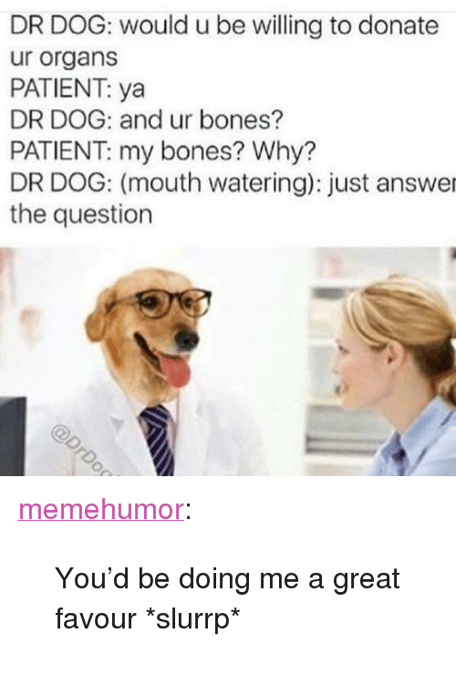 "Just Answer The Question: DR DOG: would u be willing to donate  ur organs  PATIENT: ya  DR DOG: and ur bones?  PATIENT: my bones? Why?  DR DOG: (mouth watering): just answer  the question <p><a href=""http://memehumor.net/post/172699607667/youd-be-doing-me-a-great-favour-slurrp"" class=""tumblr_blog"">memehumor</a>:</p>  <blockquote><p>You'd be doing me a great favour *slurrp*</p></blockquote>"
