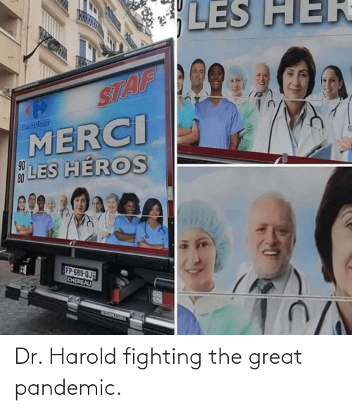 fighting: Dr. Harold fighting the great pandemic.