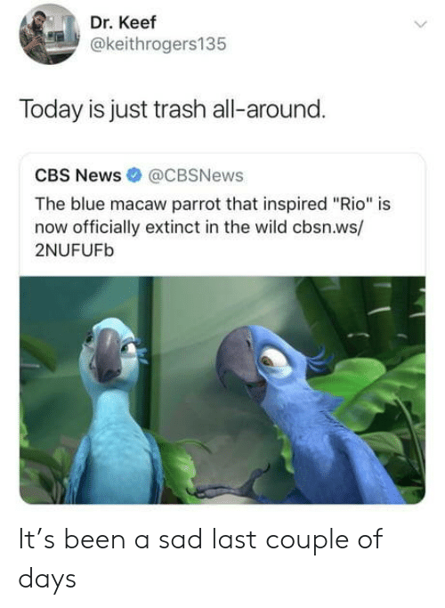 """Keef: Dr. Keef  @keithrogers135  Today is just trash all-around.  CBS News @CBSNews  The blue macaw parrot that inspired """"Rio"""" is  now officially extinct in the wild cbsn.ws/  2NUFUFb It's been a sad last couple of days"""
