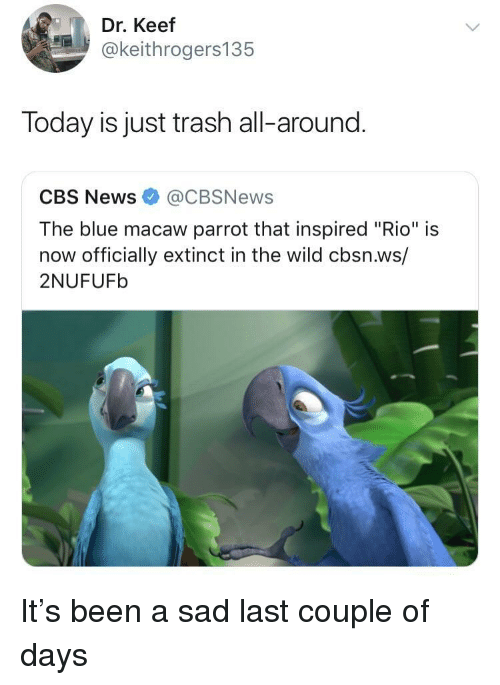 """Keef: Dr. Keef  @keithrogers135  Today is just trash all-around.  CBS News@CBSNews  The blue macaw parrot that inspired """"Rio"""" is  now officially extinct in the wild cbsn.ws/  2NUFUFb It's been a sad last couple of days"""