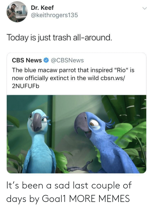 """Keef: Dr. Keef  @keithrogers135  Today is just trash all-around.  CBS News@CBSNews  The blue macaw parrot that inspired """"Rio"""" is  now officially extinct in the wild cbsn.ws/  2NUFUFb It's been a sad last couple of days by Goal1 MORE MEMES"""
