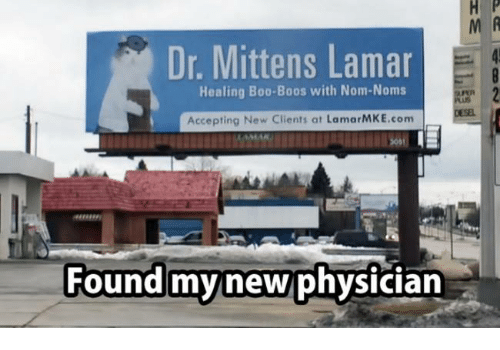 noms: Dr. Mittens Lamar  Healing Boo Boos with Nom Noms  Accepting New Clients at LamarMKE.com  Found my new physician