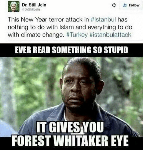 Forest Whitakers Eye: Dr. Still Jein  Follow  This New Year terror attack in HIstanbul has  nothing to do with lslam and everything to do  with climate change.  Turkey distanbulattack  EVER READ SOMETHING SO STUPID  IT GIVES YOU  FOREST WHITAKER EYE
