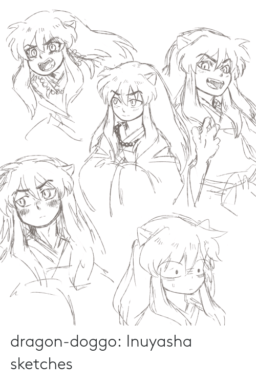 doggo: dragon-doggo:  Inuyasha sketches