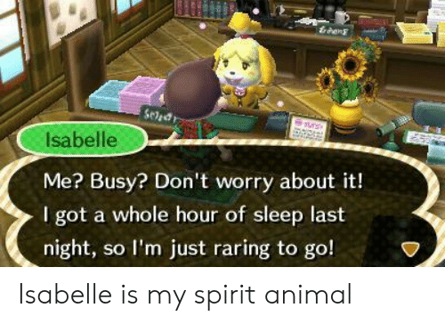 lim: drang  Isabelle  Me? Busy? Don't worry about it!  I got a whole hour of sleep last  night, so lI'm just raring to go! Isabelle is my spirit animal